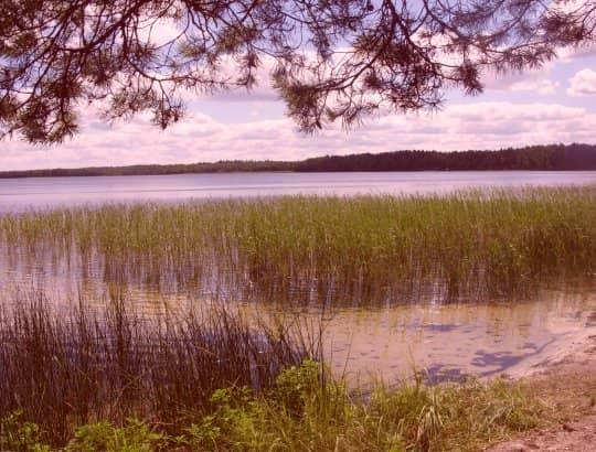 наше место возле озера