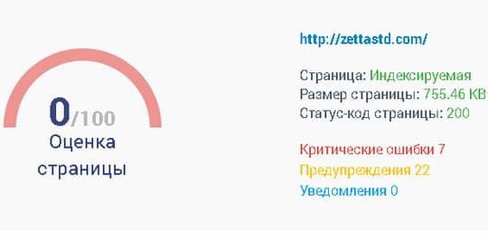 общий анализ сайта