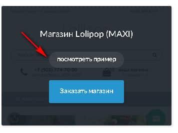 пример созданного интернет-магазина