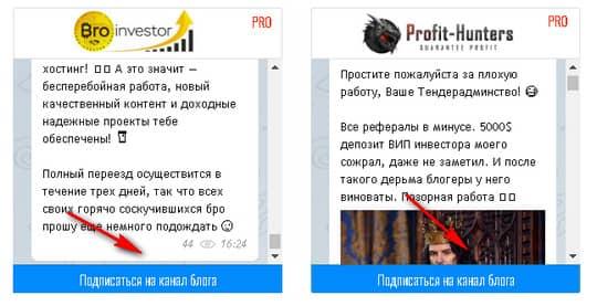 подписка на Telegram-каналы блогов