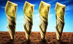 Инвестиции в 20000$ на приобретение сайтов