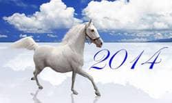 достижения 2014 года